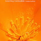 Everything Combustible